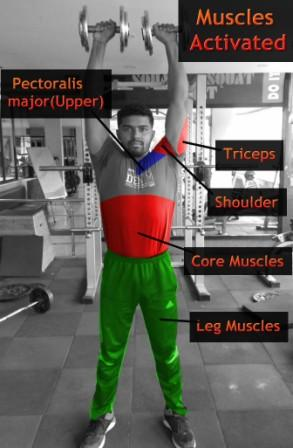 Standing dumbbell shoulder press activates more muscles than seated dumbbell overhead press