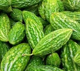 Ayurveda says bitter gourd has many immunity boosting benefits