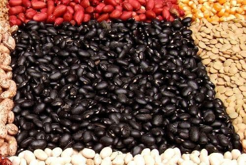 Black beans are high in protein and low in glycemic index